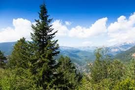 دانلود تحقیق لزوم مراقبت از پارک های کوهستانی